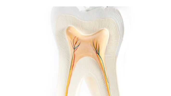 What exactly is Root Canal Procedure?