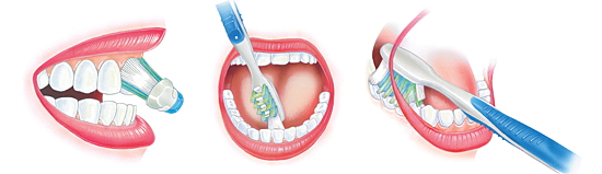 These Oral Hygiene Tips will help you maintain optimal oral health